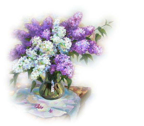 lilas en pot