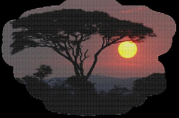 coucher de soleil 11