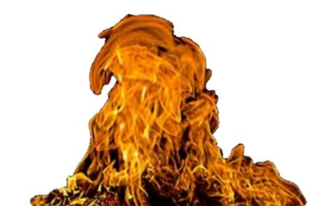 feu 15