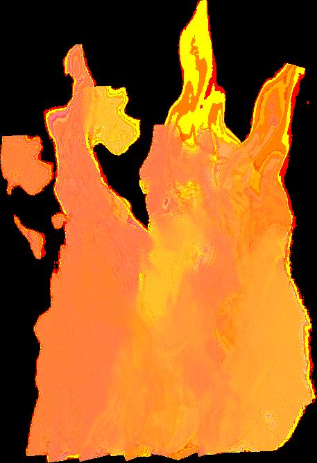 feu 6