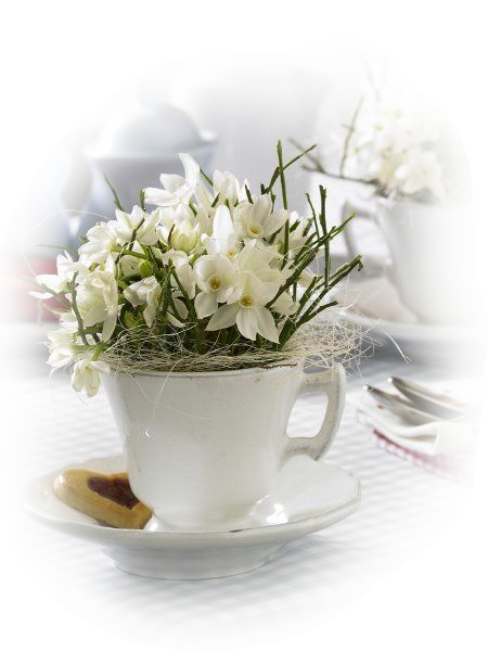 tubes fleurs de printemps page 3. Black Bedroom Furniture Sets. Home Design Ideas