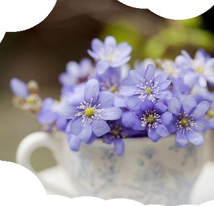 tubes fleurs de printemps. Black Bedroom Furniture Sets. Home Design Ideas