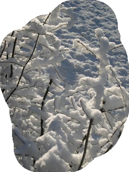 hiver 32