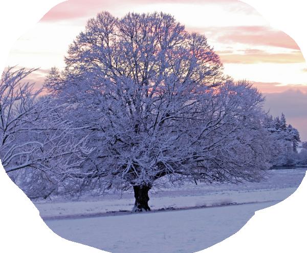 hiver 22