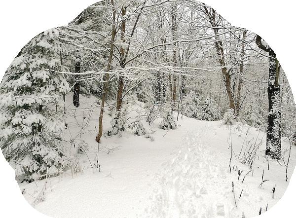 hiver 54