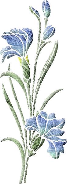 fleur 60