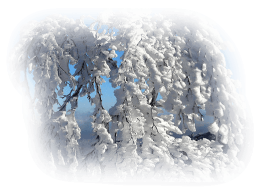 hiver 73