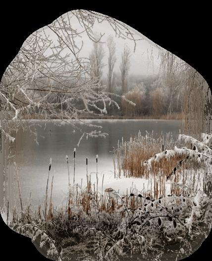 hiver 41
