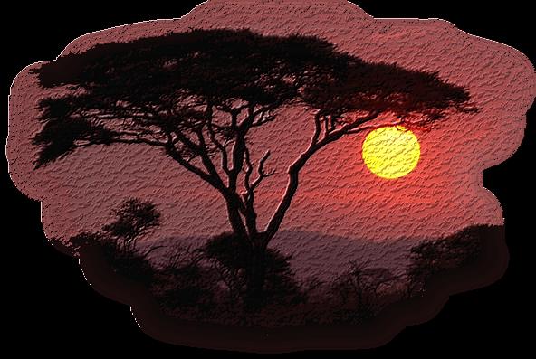 coucher de soleil 10