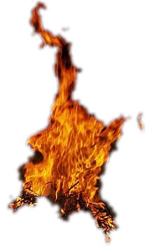 feu 8