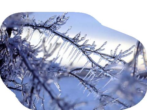 hiver 26