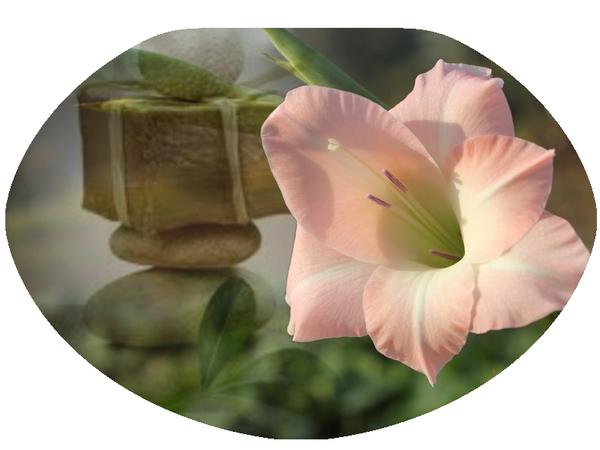 Zen fleur